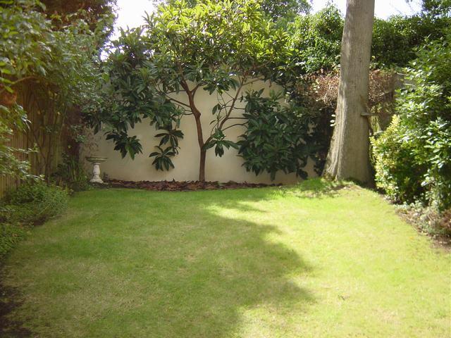04 Rear Garden Looking South